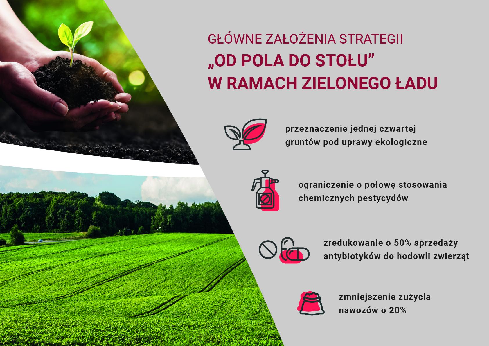 Zielony Ład – jak polityka Unii Europejskiej buduje nowe standardy w rolnictwie
