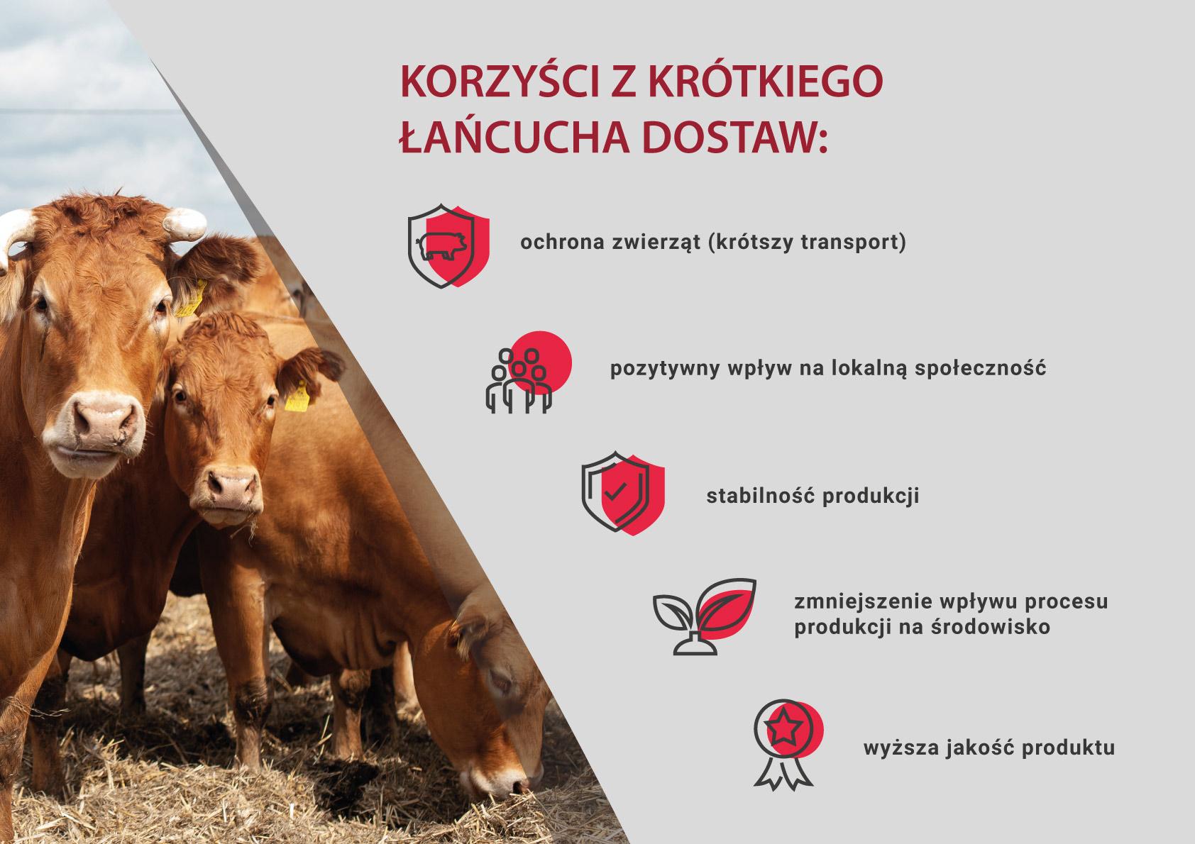 Małe i średnie przetwórstwo mięsa w Unii Europejskiej  – jak krótki łańcuch dostaw zapewnia świetną jakość