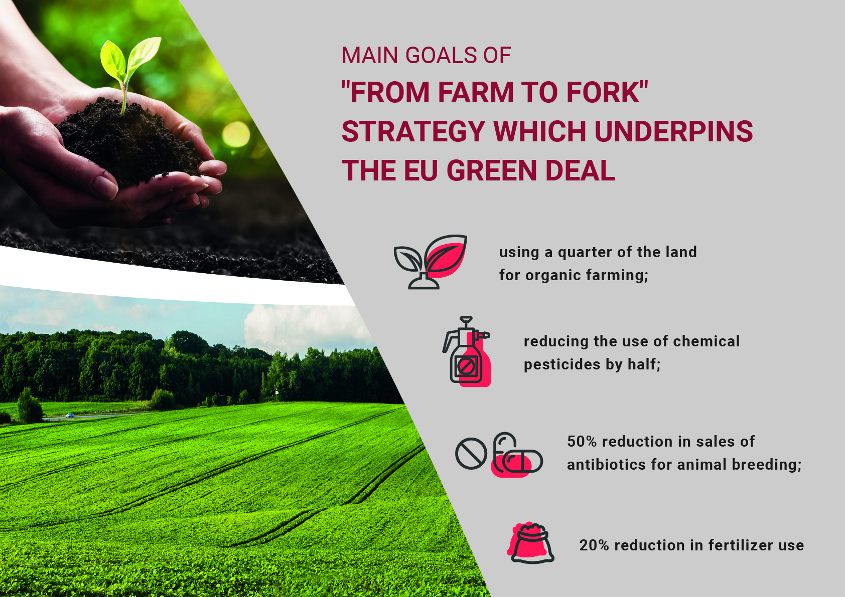 Green Deal – How European Union policy shapes new standards in agriculture