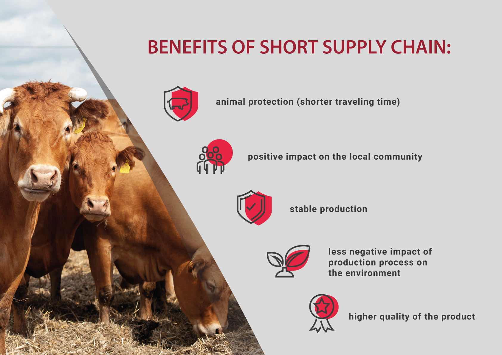 Small and medium-sized meat processors in the European Union  – how a short supply chain ensures excellent quality