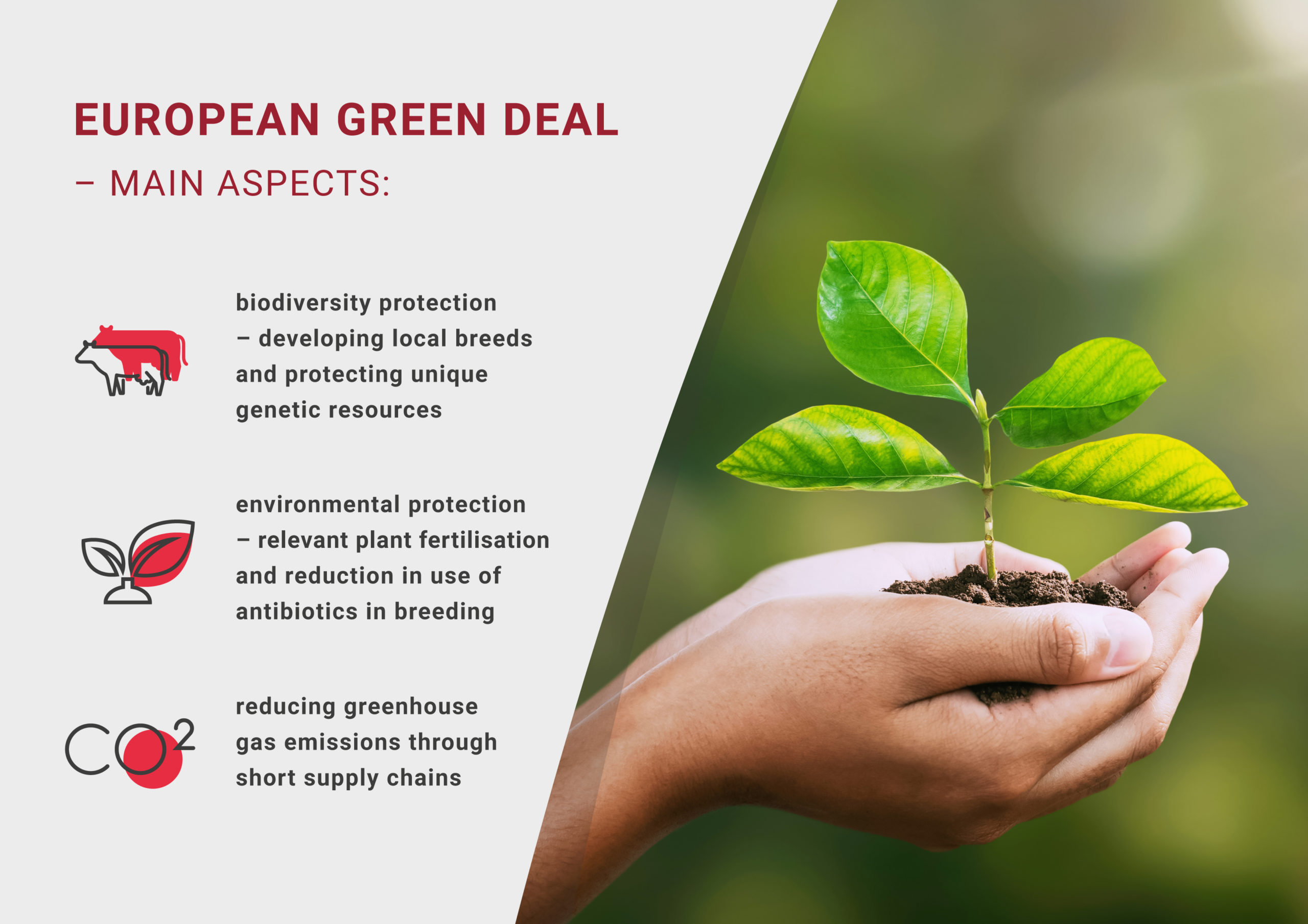The European Green Deal – the modern way to quality meat